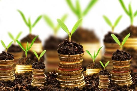Amit a privát banki szolgáltatásról tudnod kell